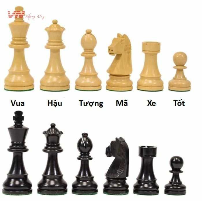 Cách di chuyển các nước cờ vua trong bàn cờ